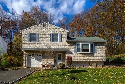East Brunswick Twp. Single Family Home For Sale: 5 Alpine Ct