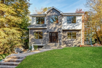 Millburn Twp. Single Family Home For Sale: 2 Deerfield Rd