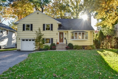 CRANFORD Single Family Home For Sale: 733 Willow St