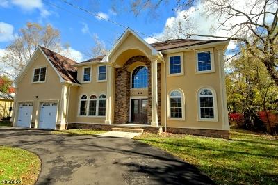 Edison Twp. Single Family Home For Sale: 484 Plainfield Rd