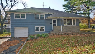 Springfield Twp. Single Family Home For Sale: 5 Lynn Dr
