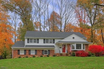New Providence Boro Single Family Home For Sale: 118 Sagamore Dr