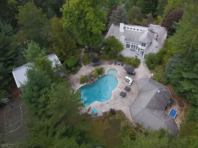 Denville Twp. Single Family Home For Sale: 10 Union Hill Rd