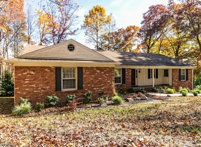 Mountainside Boro Single Family Home For Sale: 418 Summit Rd