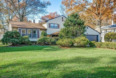 Livingston Twp. Single Family Home For Sale: 35 Fieldstone Dr