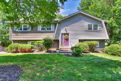 Edison Twp. Single Family Home For Sale: 90 Mt Pleasant Ave