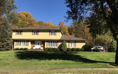 Parsippany-Troy Hills Twp. Single Family Home For Sale: 11 Hancock St