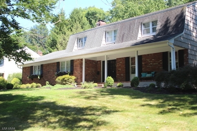 Berkeley Heights Twp. Single Family Home For Sale: 235 Spring Ridge Dr