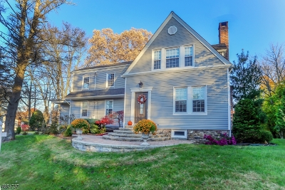 Florham Park Boro Single Family Home For Sale: 100 Ridgedale Ave
