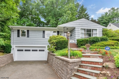 Montclair Twp. Single Family Home For Sale: 68 Alexander Ave
