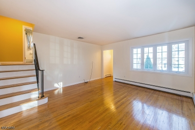 Parsippany-Troy Hills Twp. Single Family Home For Sale: 13 Seminole Avenue