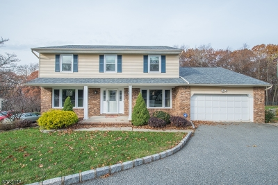 Parsippany-Troy Hills Twp. Single Family Home For Sale: 50 Whitewood Dr