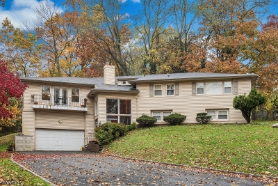 West Orange Twp. Single Family Home For Sale: 72 Luddington Rd