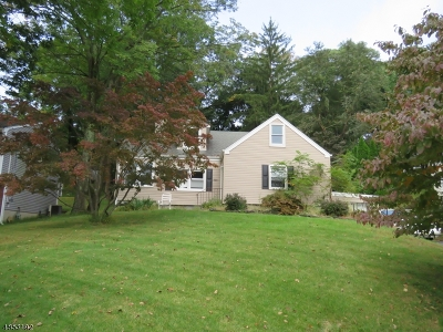 Boonton Town Single Family Home For Sale: 523 Boyd St