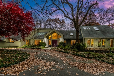 WATCHUNG Single Family Home For Sale: 343 Johnston Dr