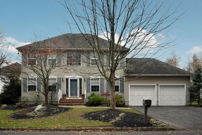 Scotch Plains Twp. Single Family Home For Sale: 9 Treeview Cir