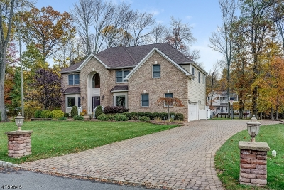 Berkeley Heights Twp. Single Family Home For Sale: 20 Rogers Ave