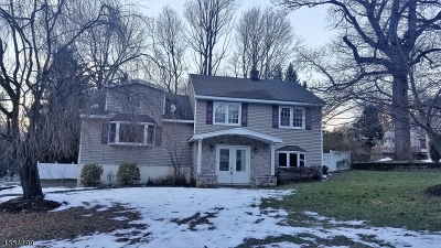 Randolph Twp. Single Family Home For Sale: 7 Nerewood Rd