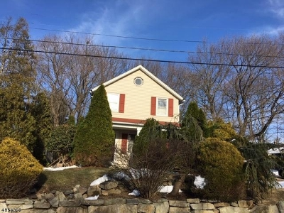 Single Family Home For Sale: 6 Morris Ave