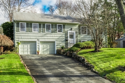 Livingston Twp. Single Family Home For Sale: 4 Browning Dr