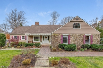 Millburn Twp. Single Family Home For Sale: 247 Dale Dr
