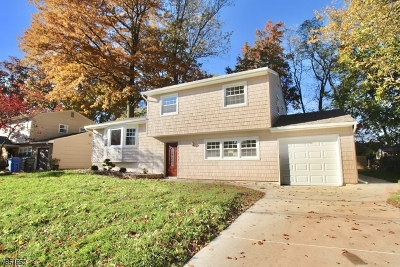 Woodbridge Twp. Single Family Home For Sale: 4 Varady Dr
