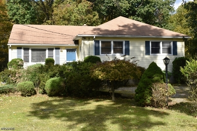 Parsippany-Troy Hills Twp. Single Family Home For Sale: 666 Park Rd