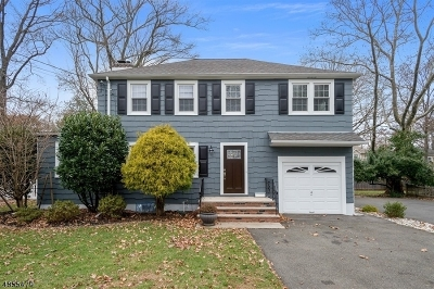 Cranford Twp. Single Family Home For Sale: 6 Indian Spring Rd