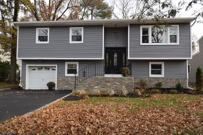 Springfield Twp. Single Family Home For Sale: 50 Denham Rd
