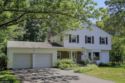 Randolph Twp. Single Family Home For Sale: 6 Holly Dr