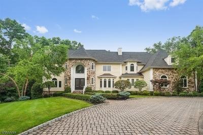 Bernards Twp. Single Family Home For Sale: 40 Canoe Brook Ln