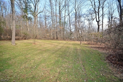 WATCHUNG Residential Lots & Land For Sale: 88b Century
