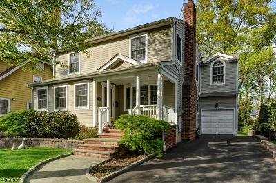 Livingston Twp. Single Family Home For Sale: 45 Brookside Ave