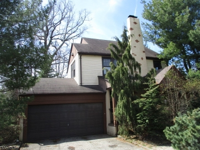 Montclair Twp. Single Family Home For Sale: 52 Brookfield Rd