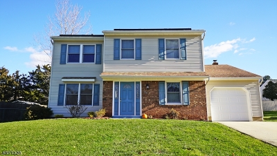 Edison Twp. Single Family Home For Sale: 48 Roxy Ave