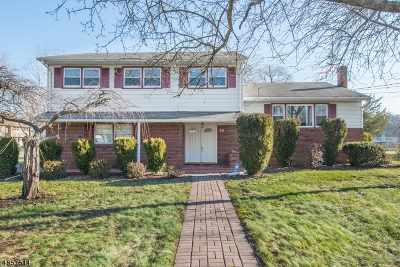 Parsippany-Troy Hills Twp. Single Family Home For Sale: 29 Ferndale Dr