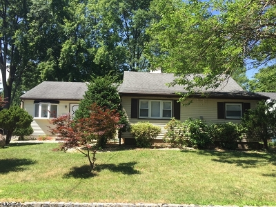 Parsippany-Troy Hills Twp. Single Family Home For Sale: 61 Atlantic Dr