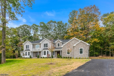 Randolph Twp. Single Family Home For Sale: 14 Waterfall Dr