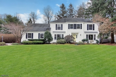Randolph Twp. Single Family Home For Sale: 31 Wilkinson Rd