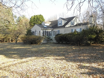 Randolph Twp. Single Family Home For Sale: 2 Doby Rd