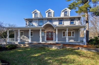 East Brunswick Twp. Single Family Home For Sale: 13 Bristol Ct