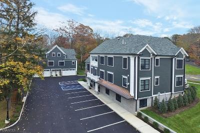 WATCHUNG Rental For Rent: 210 Mountain Blvd #2B