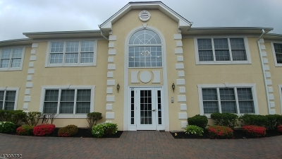 Clark Twp. Condo/Townhouse For Sale: 19 Cellar Ave