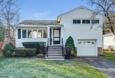 Springfield Twp. Single Family Home For Sale: 85 Hawthorn Ave