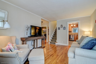 Springfield Twp. Single Family Home For Sale: 244 Milltown Rd