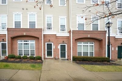 Belleville Twp. Condo/Townhouse For Sale: 813 De Luca Rd