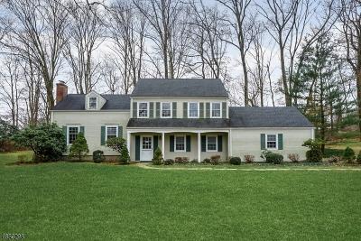 Morris Twp. Single Family Home For Sale: 4 Stonehenge Rd