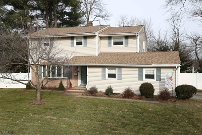 East Hanover Twp. Single Family Home For Sale: 102 Fairway Dr