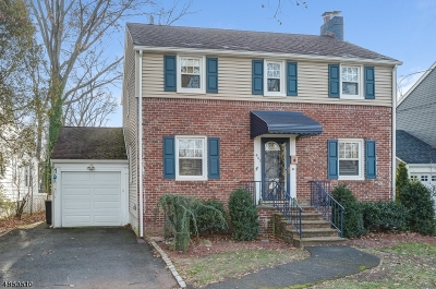 Springfield Twp. Single Family Home For Sale: 447 Meisel Ave