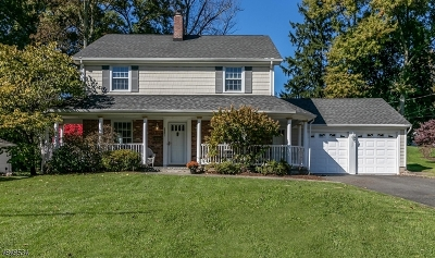 Scotch Plains Twp. Single Family Home For Sale: 2221 Woodland Ter